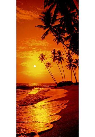 Фотообои »Sunny Palms - Tür...