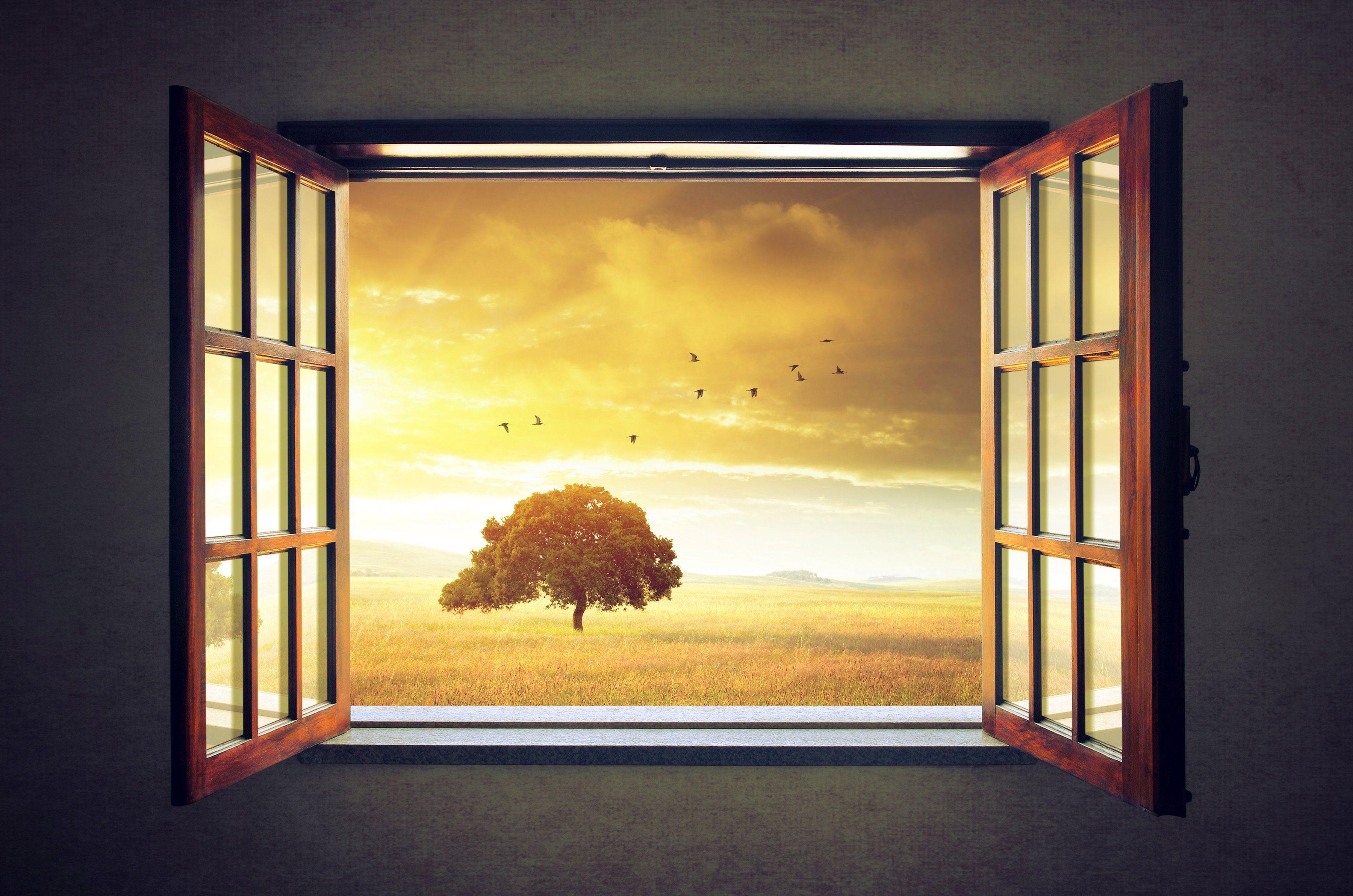 PAPERMOON Fototapete »Sunny Spring«, Vlies, 7 Bahnen, 350 x 260 cm
