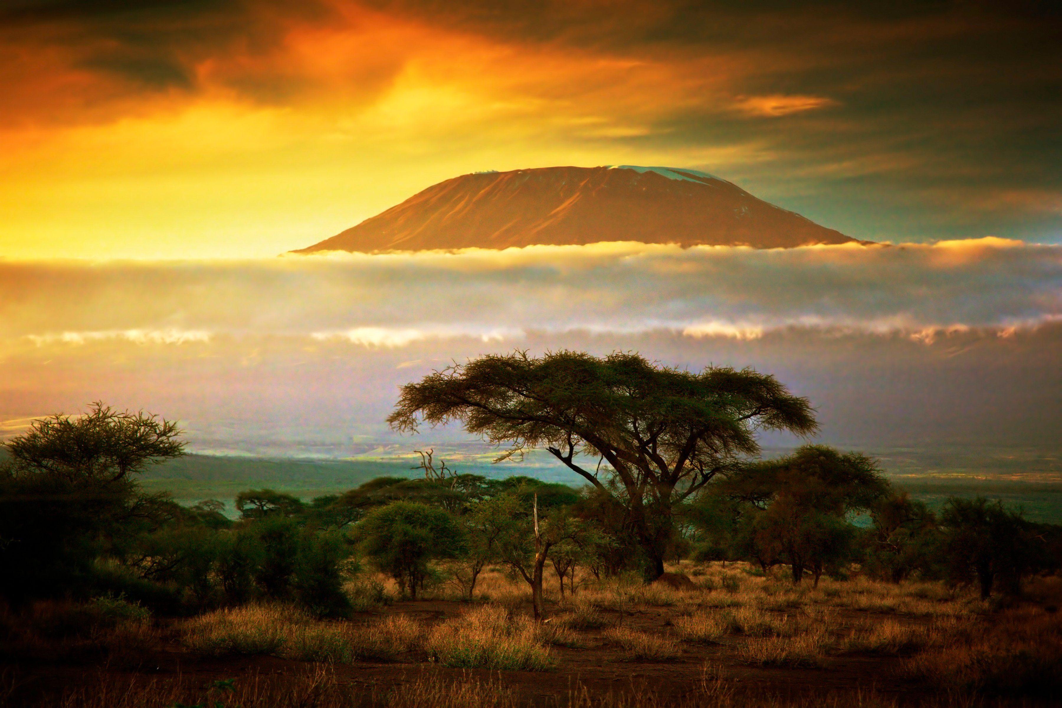 PAPERMOON Fototapete »Mount Kilimanjaro and Clouds«, BlueBack, 7 Bahnen, 350 x 260 cm