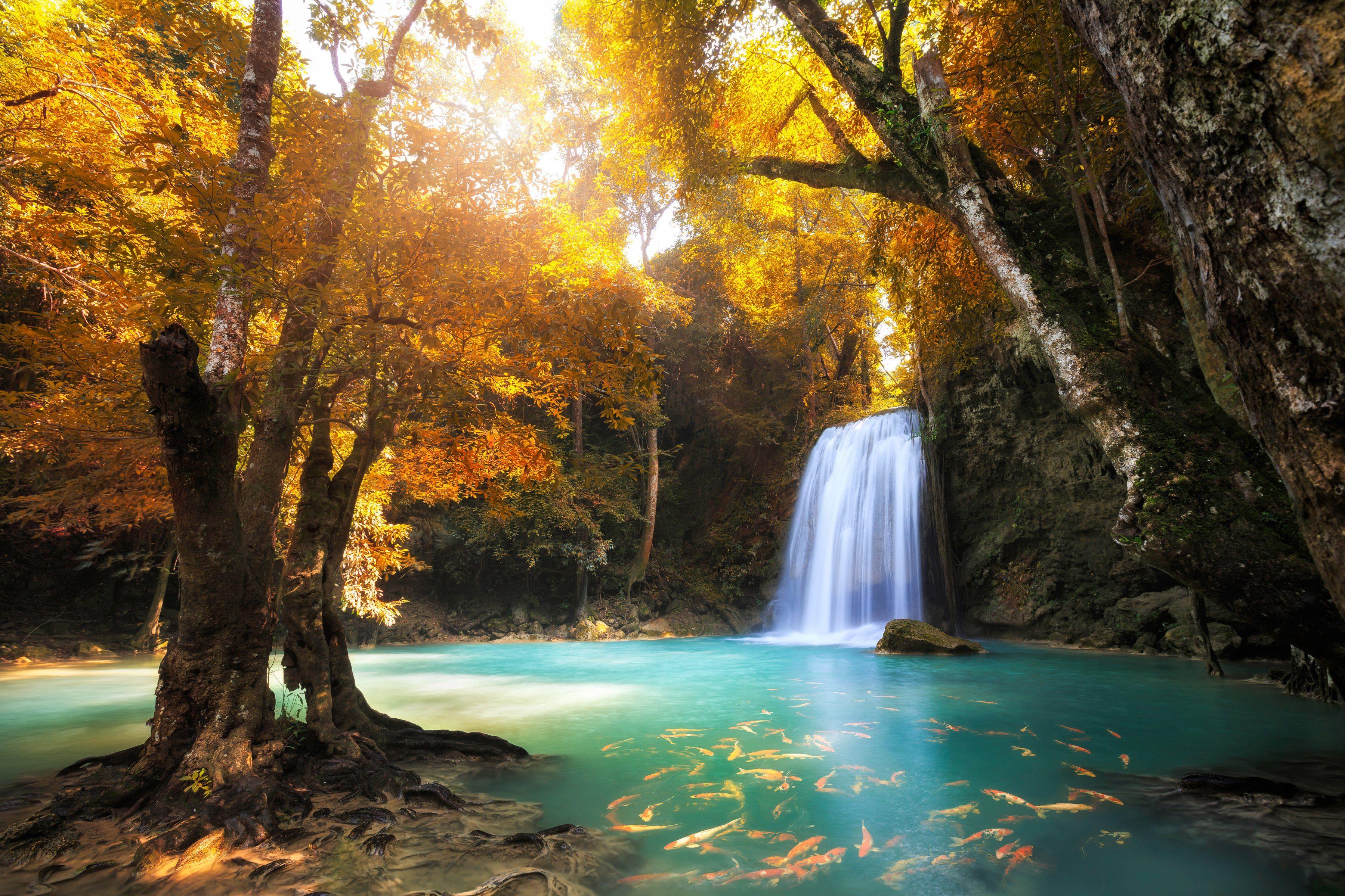PAPERMOON Fototapete »Waterfall in Kanchanaburi, Thailand«, BlueBack, 7 Bahnen, 350 x 260 cm
