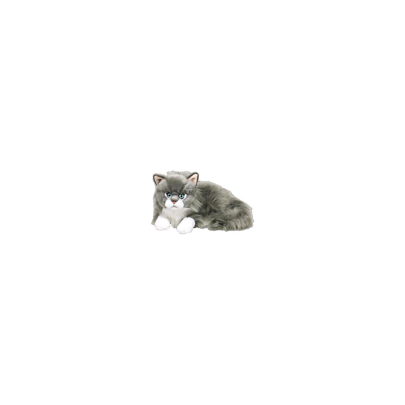 Ragdoll Katze 25cm
