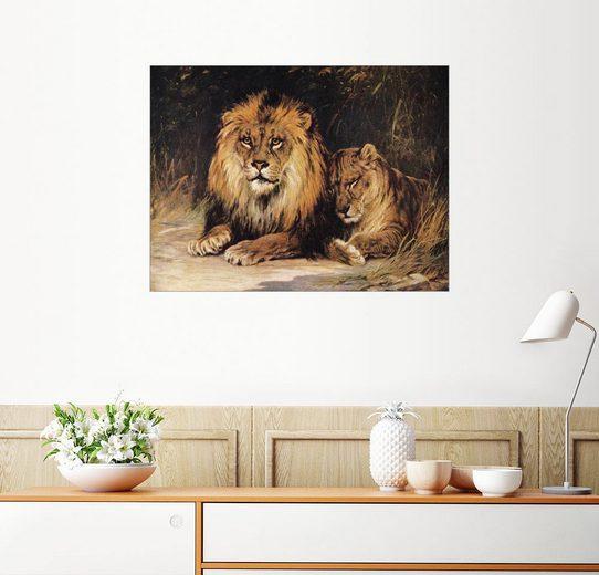 Posterlounge Wandbild »Löwen«