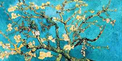 Home affaire Wandbild »Mandorlo in fiore«, Blumen