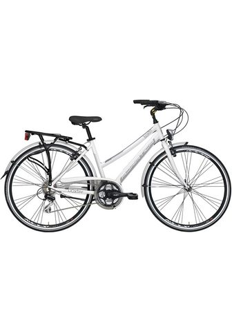 ADRIATICA Turistinis dviratis »Boxter HP« 21 Gan...