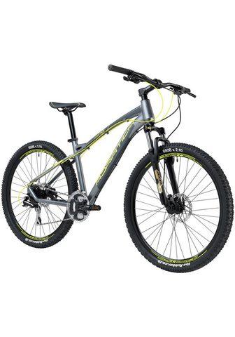 ADRIATICA Kalnų dviratis »Wing RS« 24 Gang Shima...