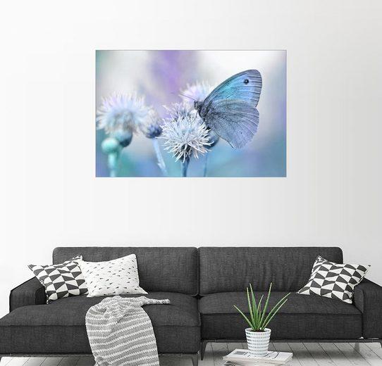 Posterlounge Wandbild - Atteloi »Schmetterling Blau«