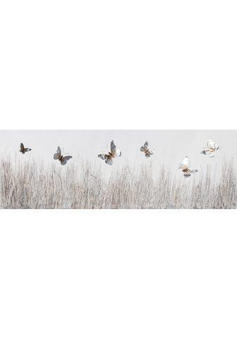 Paveikslas »Schmetterlinge - Wiese«