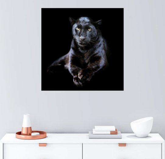 Posterlounge Wandbild »Schwarzer Leopard«