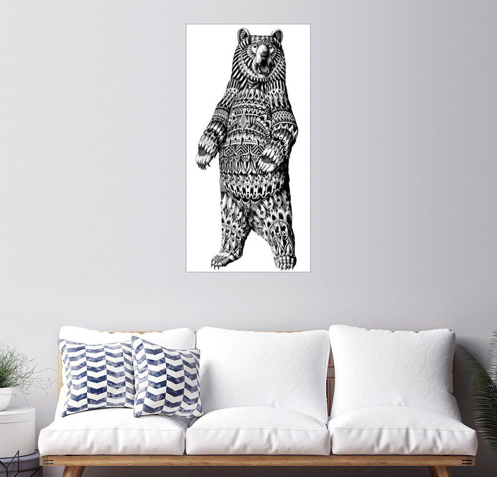 Posterlounge Wandbild - BIOWORKZ »Ornament Grizzly Bär«