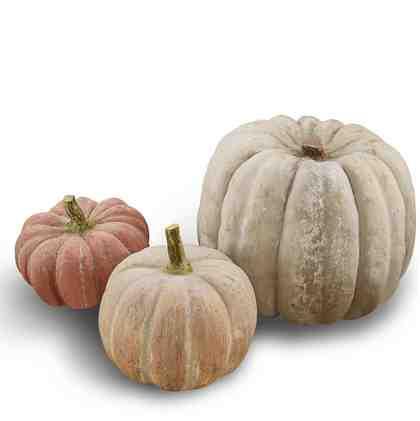 Loberon Kürbis 3er Set »Pumpkin«