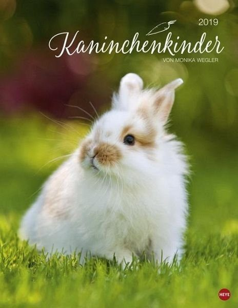 Kalender »Kaninchenkinder Posterkalender 2019«