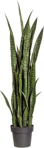 Kunstpflanze »Sanseveria«, Creativ green, Höhe 120 cm