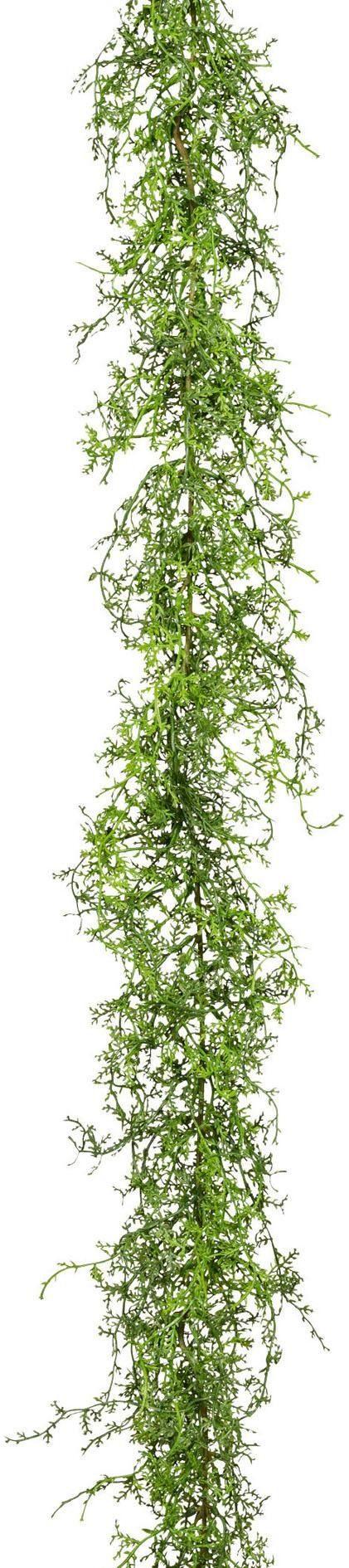 Kunstranke »Asparagusgirlande«, ca. 180 cm