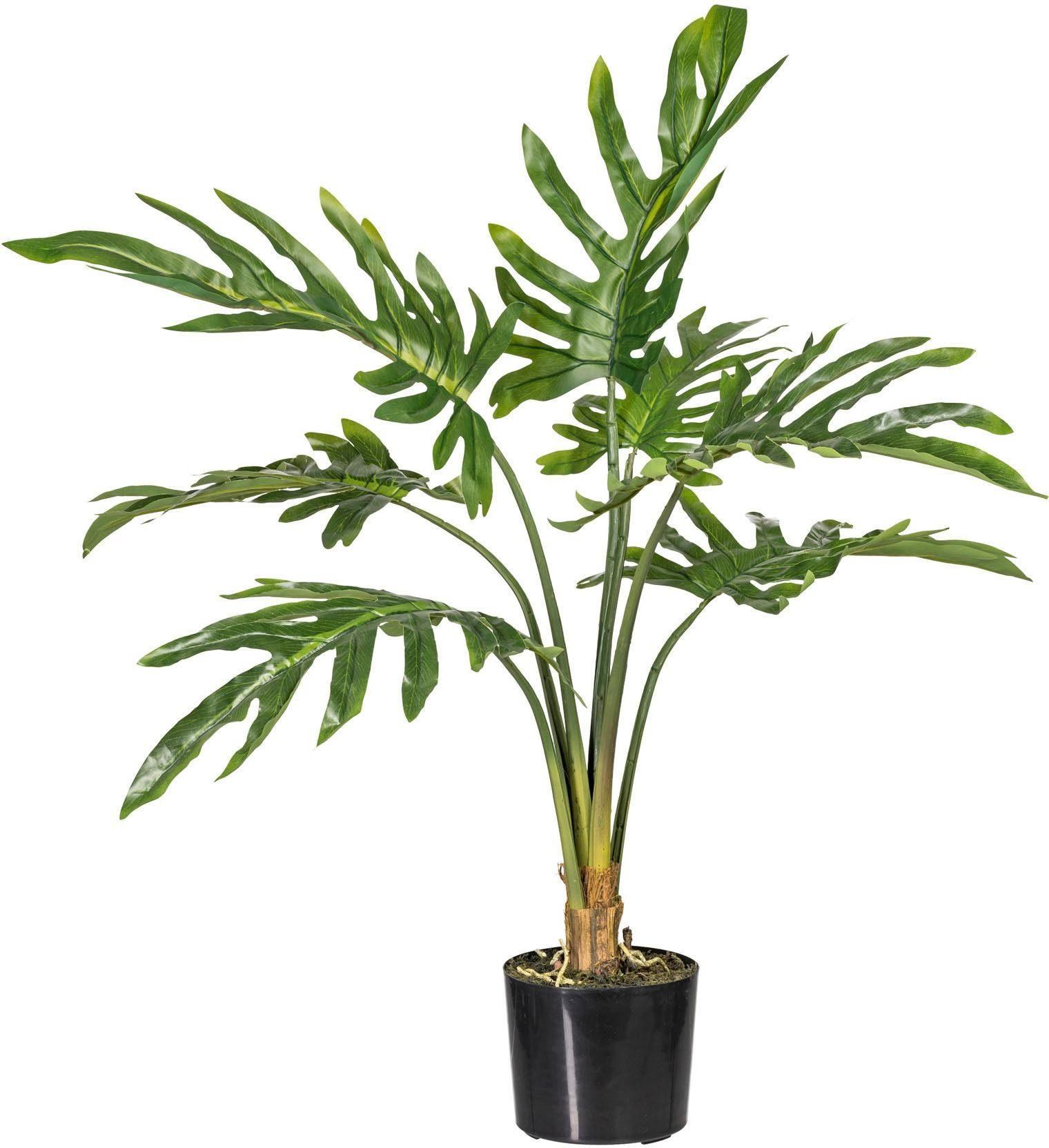 Künstliche Zimmerpflanze »Philodendron« x7, ca. 90 cm