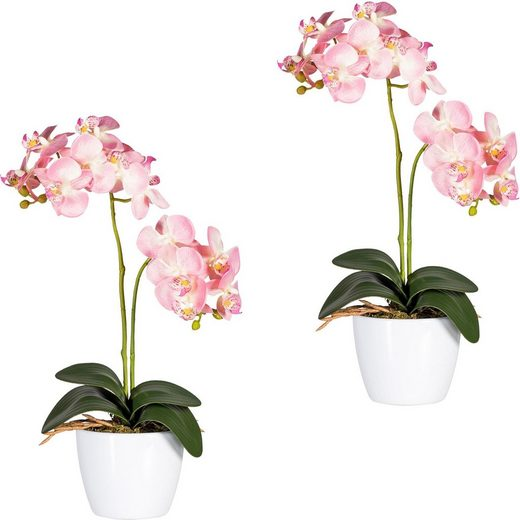 Kunstpflanze »Phalaenopsis« Orchidee, Creativ green, Höhe 50 cm