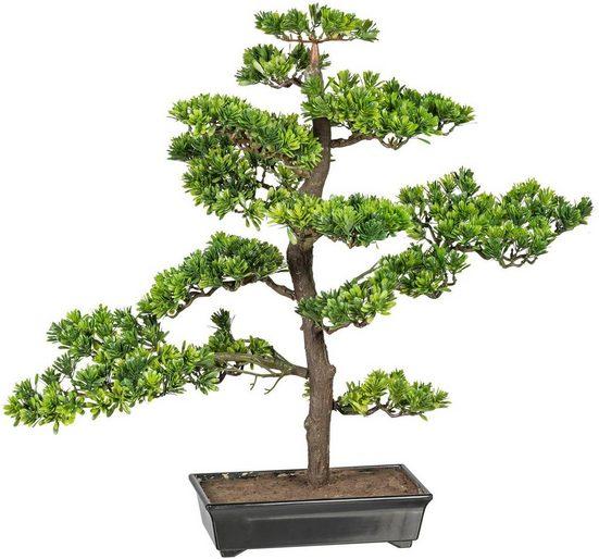 Kunstbonsai »Bonsai Podocarpus« Bonsai, Creativ green, Höhe 63 cm
