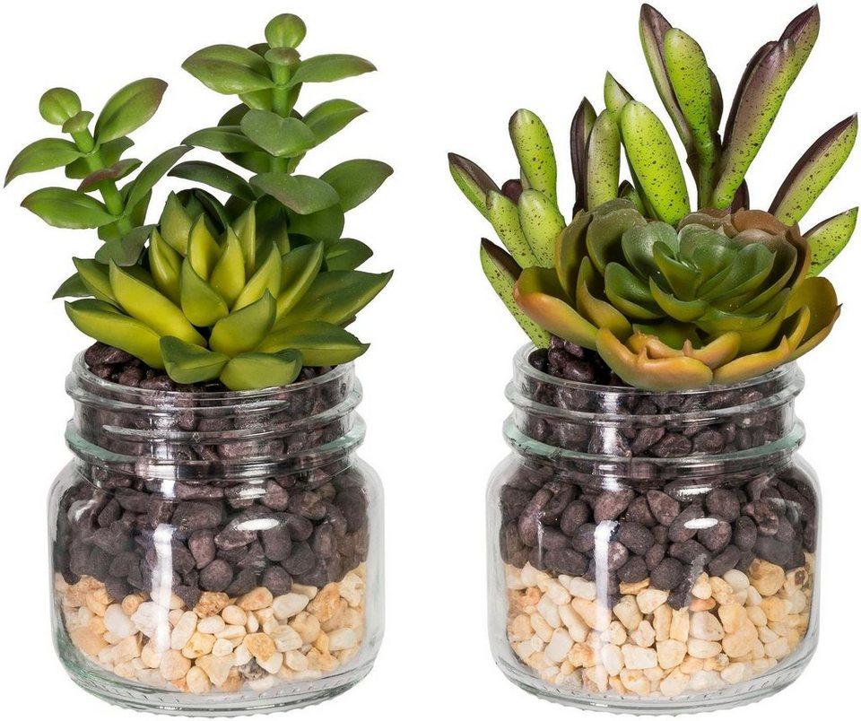 k nstliche zimmerpflanze sukkulenten arrangement 2er set online kaufen otto. Black Bedroom Furniture Sets. Home Design Ideas