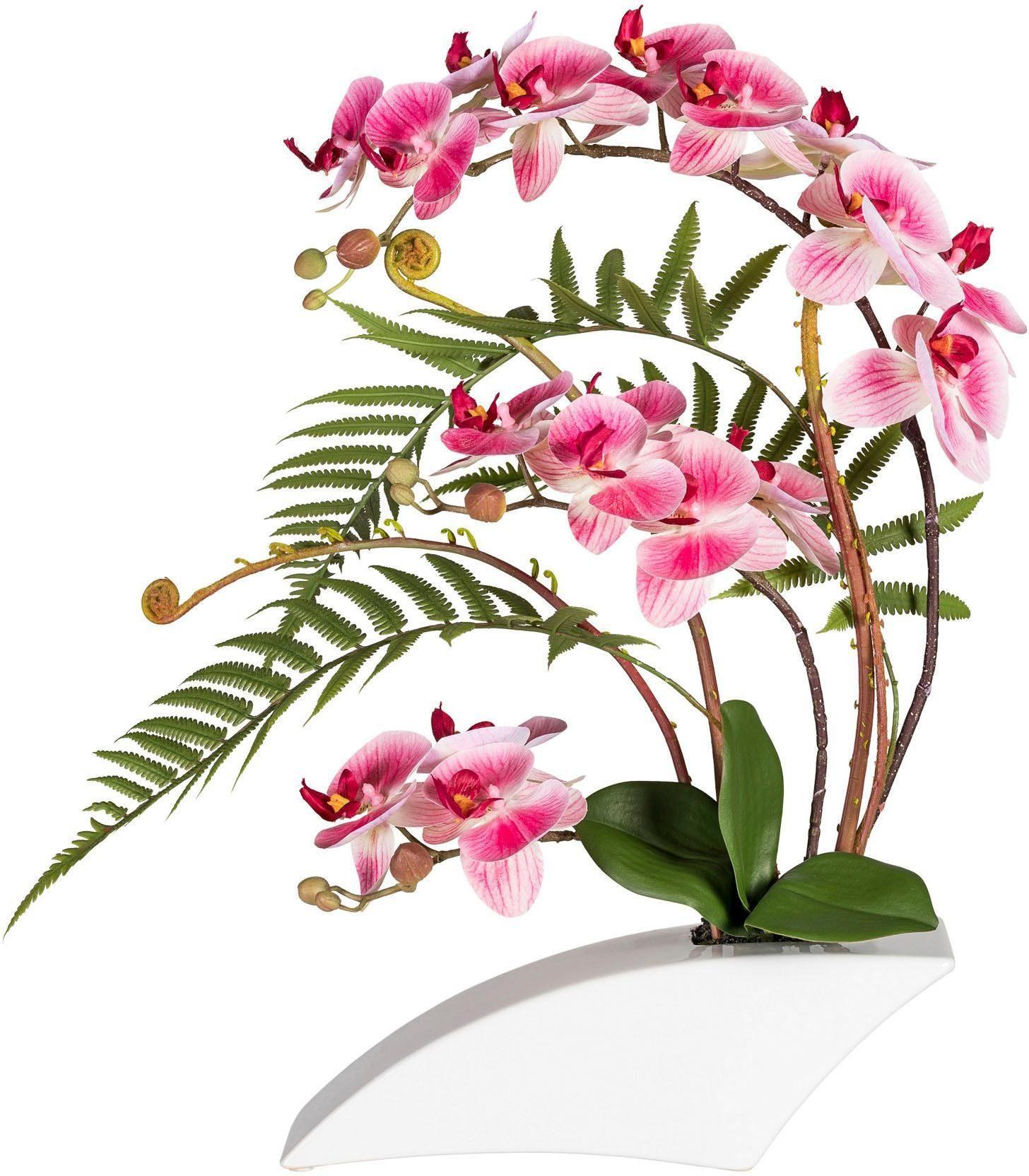Kunstorchidee »Phalaenopsis«arrangement, ca. 50 cm