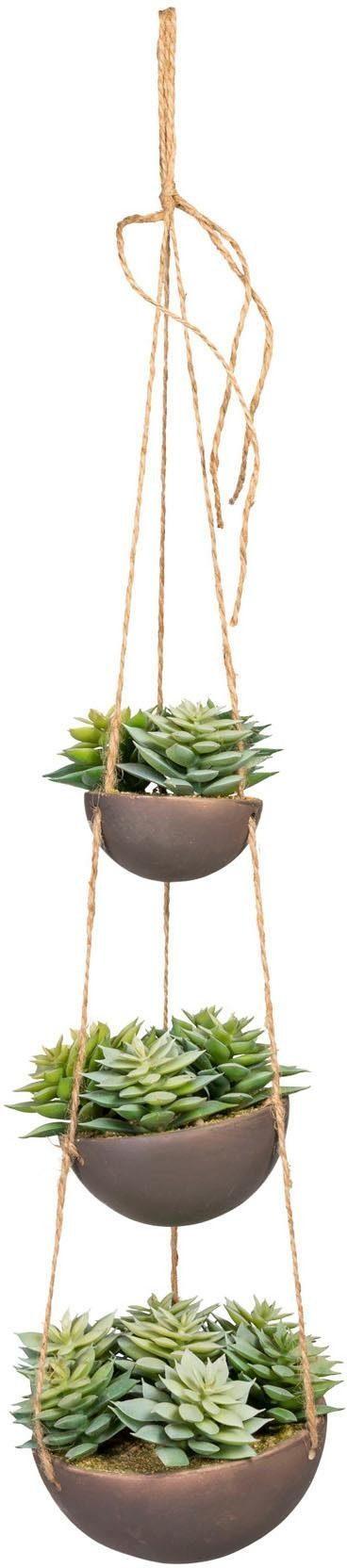 Künstliche Zimmerpflanze »Sukkulenten«arrangement, ca. 40 cm