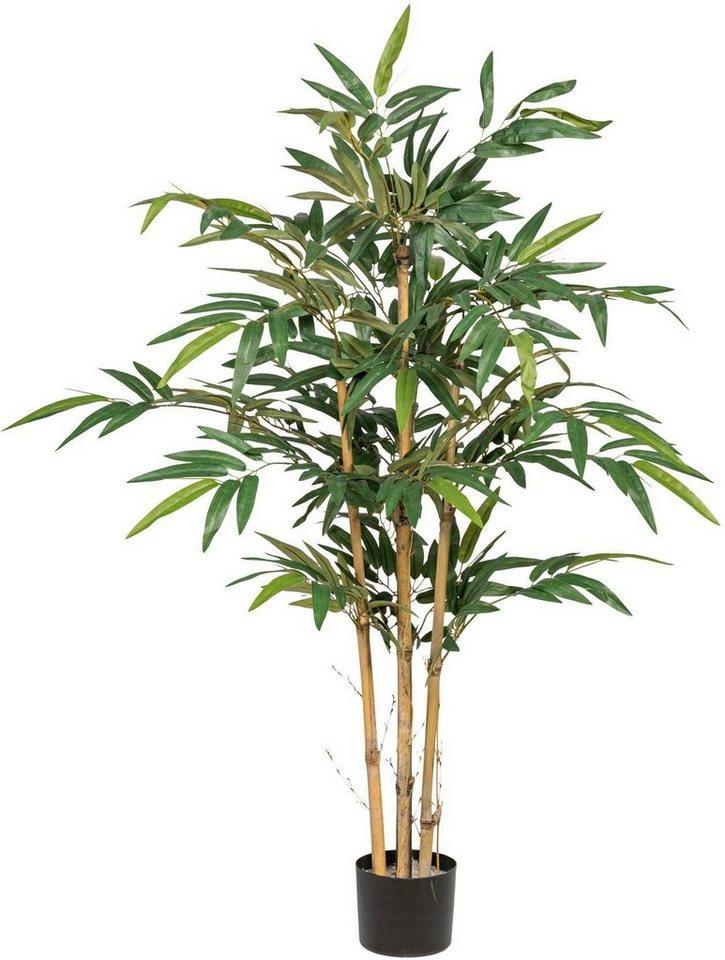 Kunstliche Zimmerpflanze Bambus Online Kaufen Otto