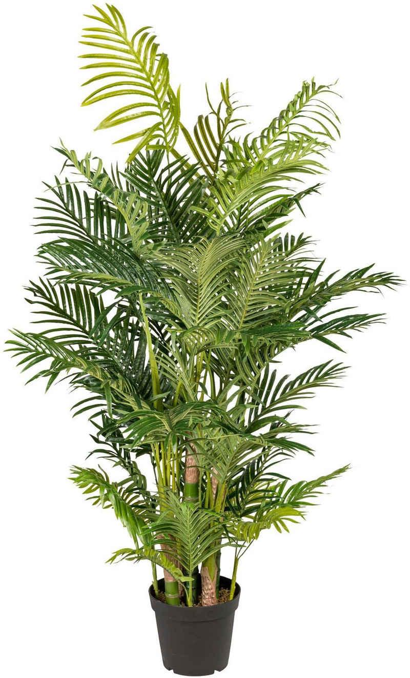 Kunstpalme »Arecapalme« Palme, Creativ green, Höhe 170 cm