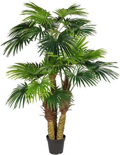 Kunstpalme »Fächerpalme« Palme, Creativ green, Höhe 185 cm