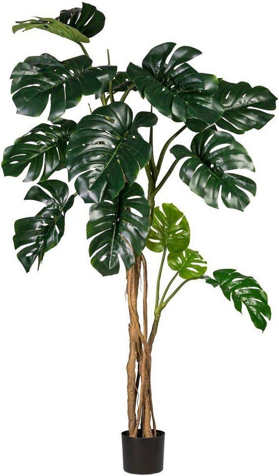 k nstliche zimmerpflanze splitphilodendron x13 bl tter online kaufen otto. Black Bedroom Furniture Sets. Home Design Ideas