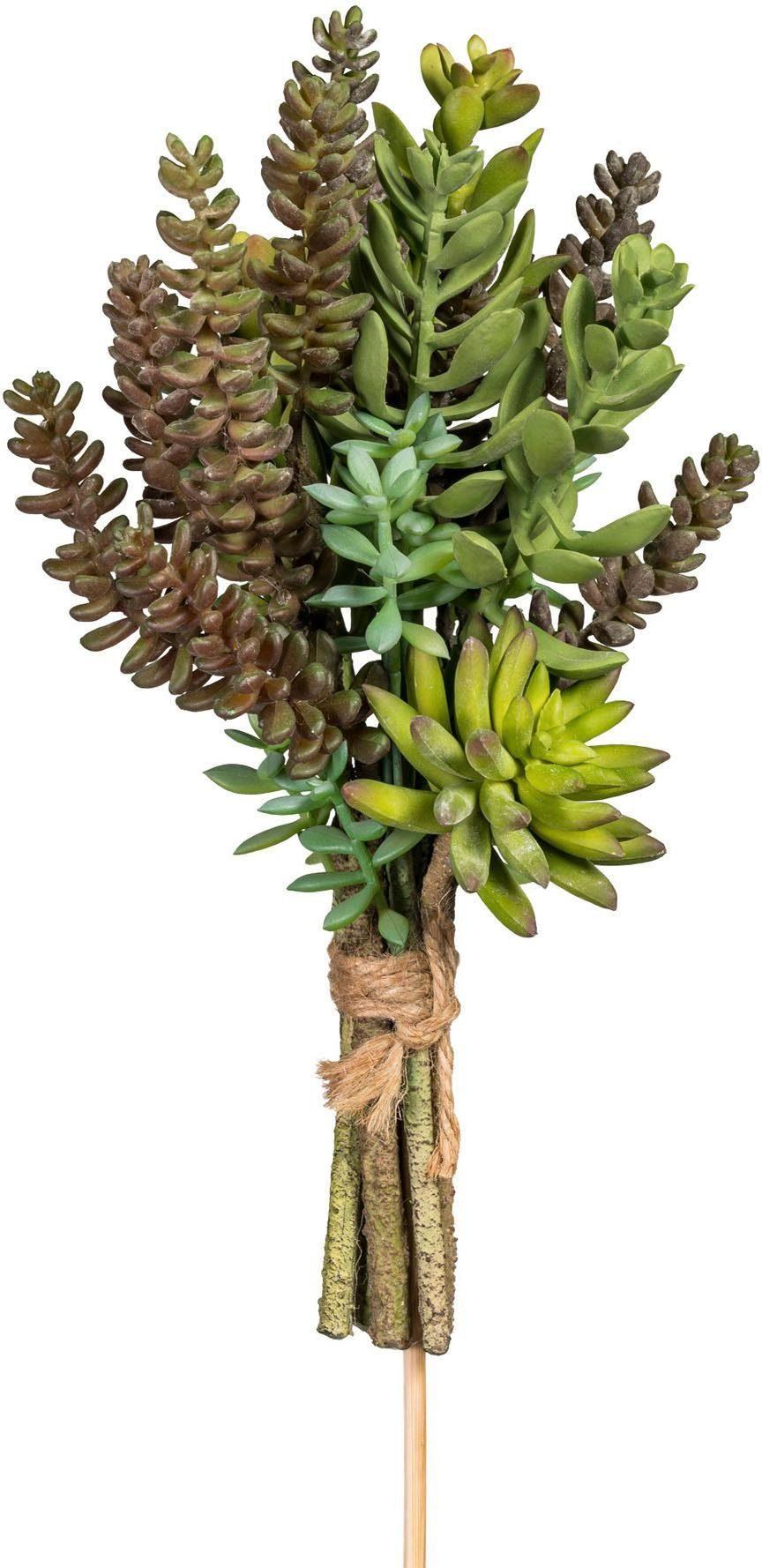 Künstliche Zimmerpflanze »Sukkulentenbündel« x8 ,ca. 30 cm