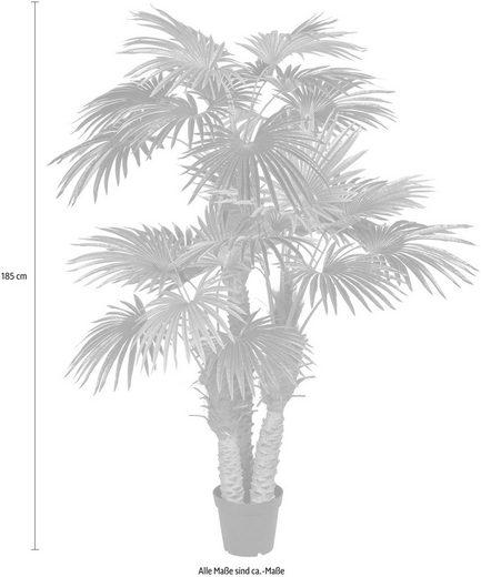 Kunstpflanze »Fächerpalme«  Creativ green  höhe 185 Zentimeter