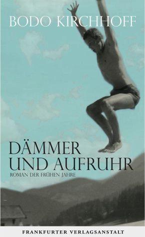 Gebundenes Buch »Dämmer und Aufruhr«