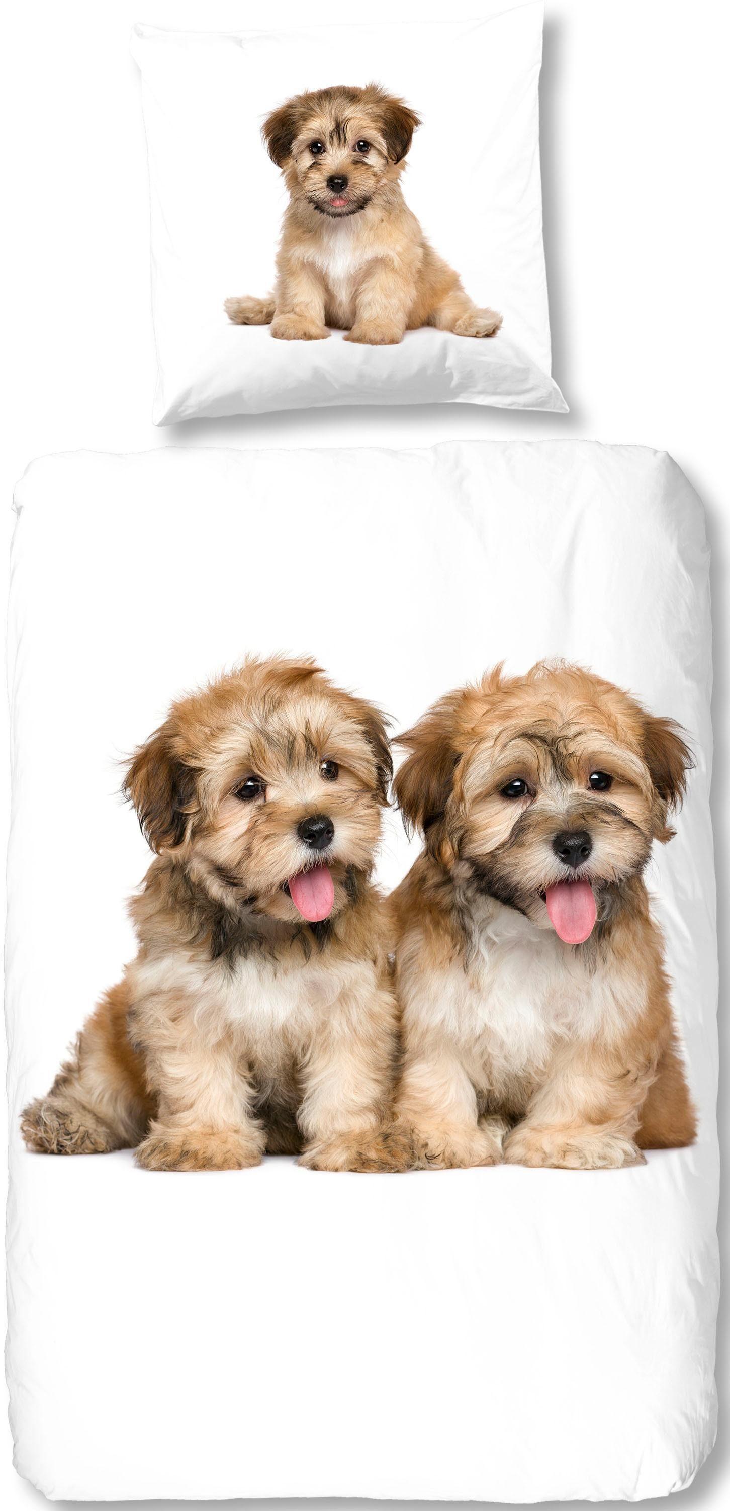 Bettwäsche »Pim«, good morning, mit kleinen Hunde Welpen