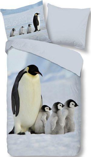 Wendebettwäsche »Pinguins«, good morning, mit Pinguin Motiv