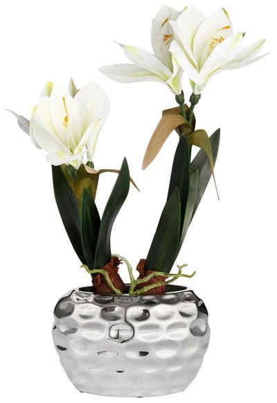 Kunstblume »Amaryllis«, my home, Höhe 49 cm, Fest verankert im Keramiktopf