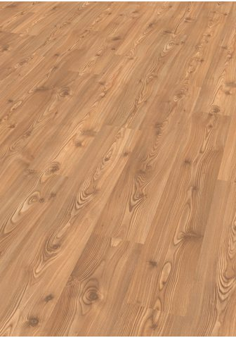 EGGER Laminuotos grindys »BASIC Kanadische F...