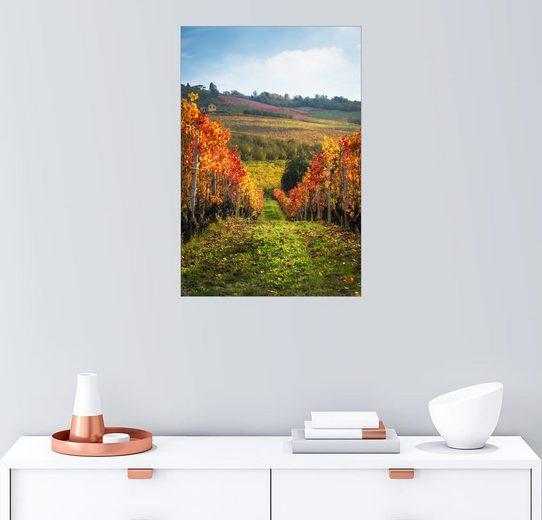 Posterlounge Wandbild - Salvadori Chiara »Langhe im Herbst, Italien«