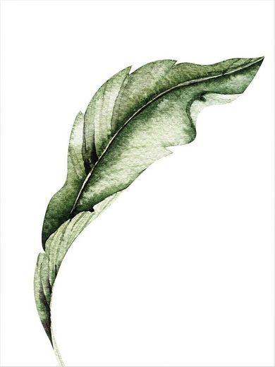 Poster »Kvilis - Banana Leaf 02«