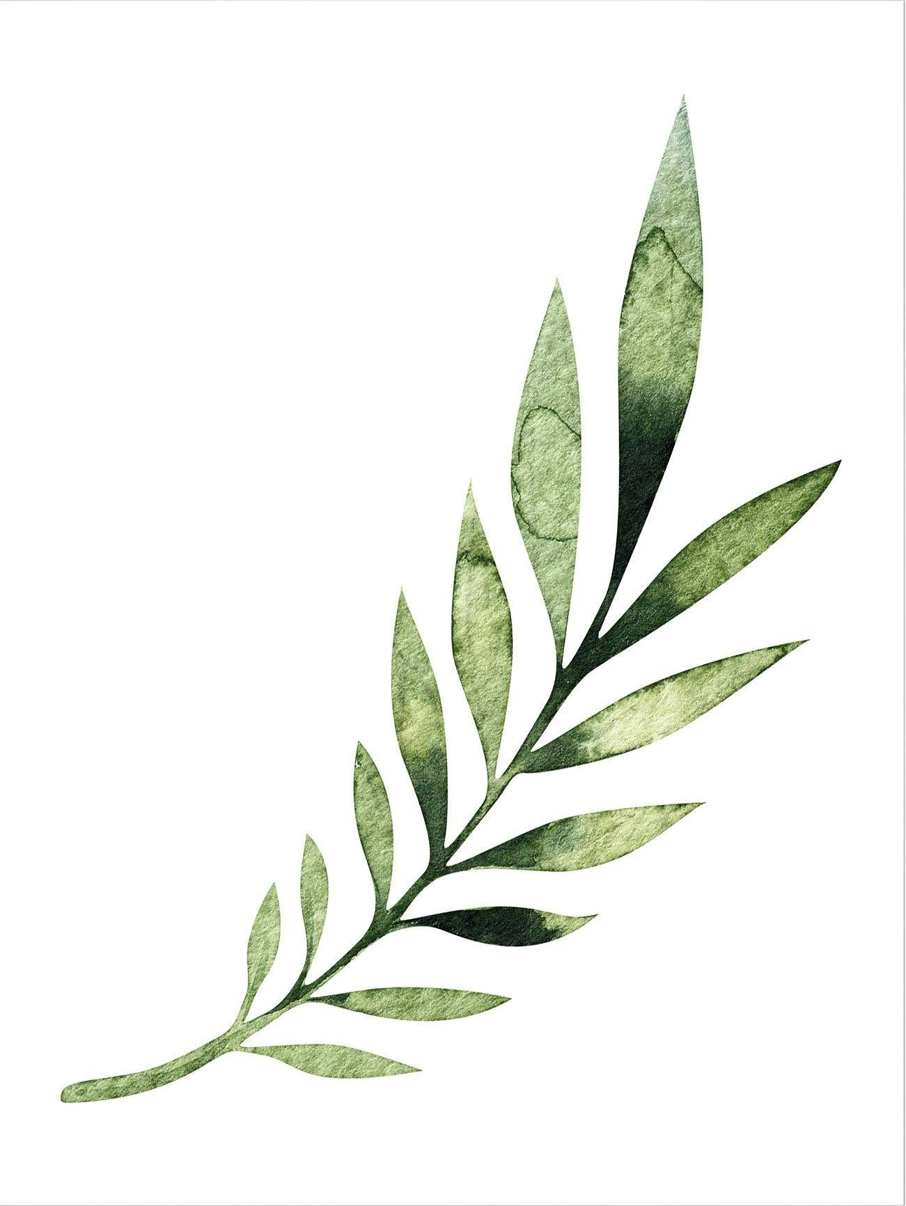 Poster »Kvilis - Palm Leaf« 50/60 cm