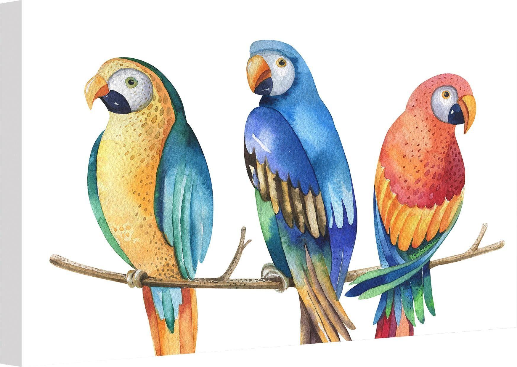 Leinwandbild »Kvilis - Bunte Papageien« 100/2/70 cm