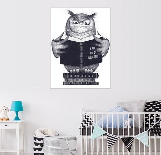 Posterlounge Wandbild - Valeriya Korenkova »Wise owl«