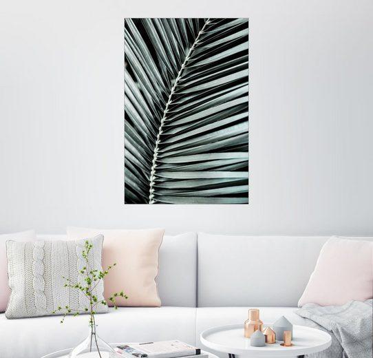 Posterlounge Wandbild - Mareike Böhmer Photography »French Palms 3«