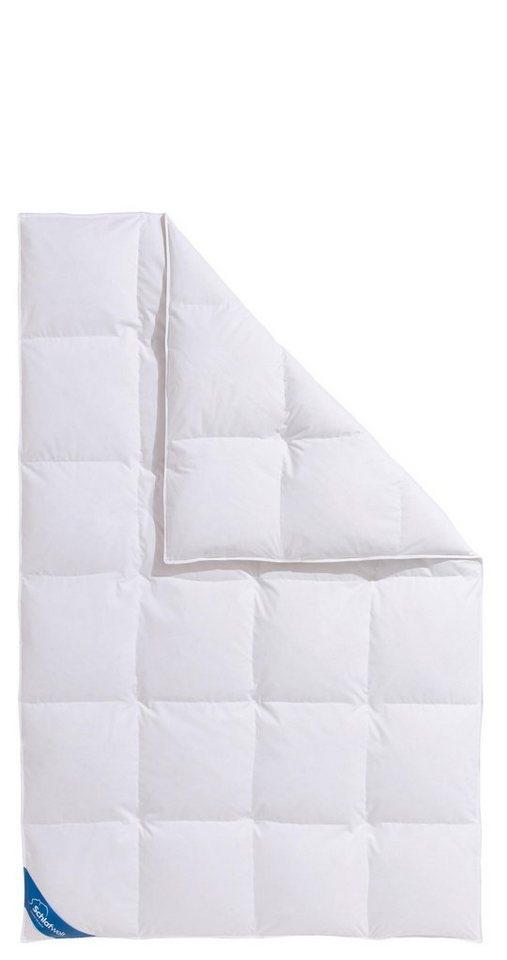 Daunenbettdecke Hanna Schlafwelt Normal Fullung 60 Daunen 40 Federn Bezug 100 Baumwolle 1 Tlg Wirksam Gegen Milben Und Mucken