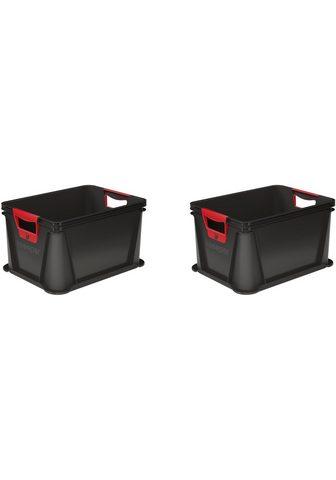 KEEEPER Transportbehälter »luis« (Set)