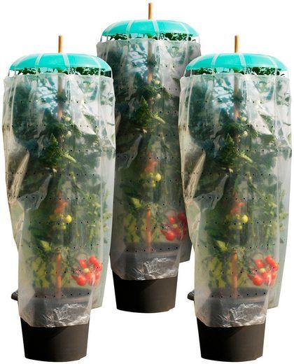 KHW Set: Pflanzenschutzdach »Tomatenhut Starter«, 3 Stk., ØxH: 49x7 cm, inkl. 3 Schläuchen + Folien