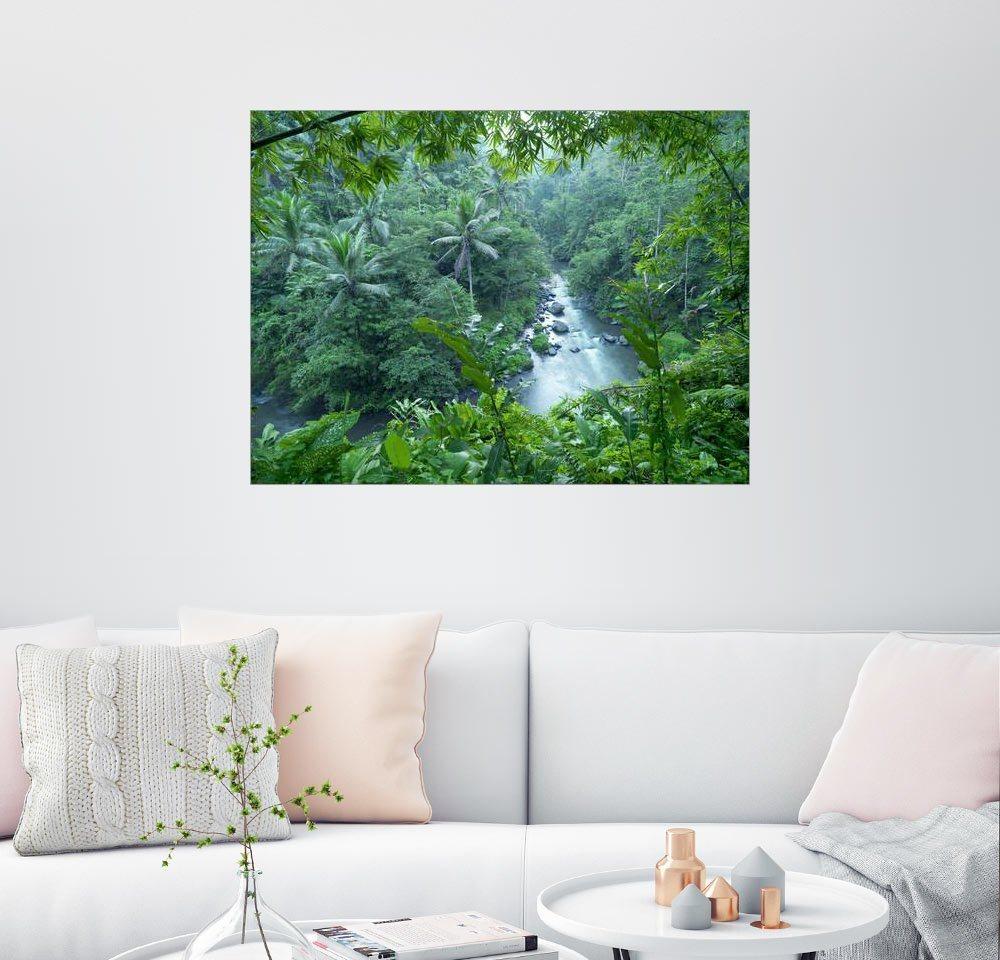 Posterlounge Wandbild – xPACIFICA tropischer Dschungel bunt,mehrfarbig | 04053831276430