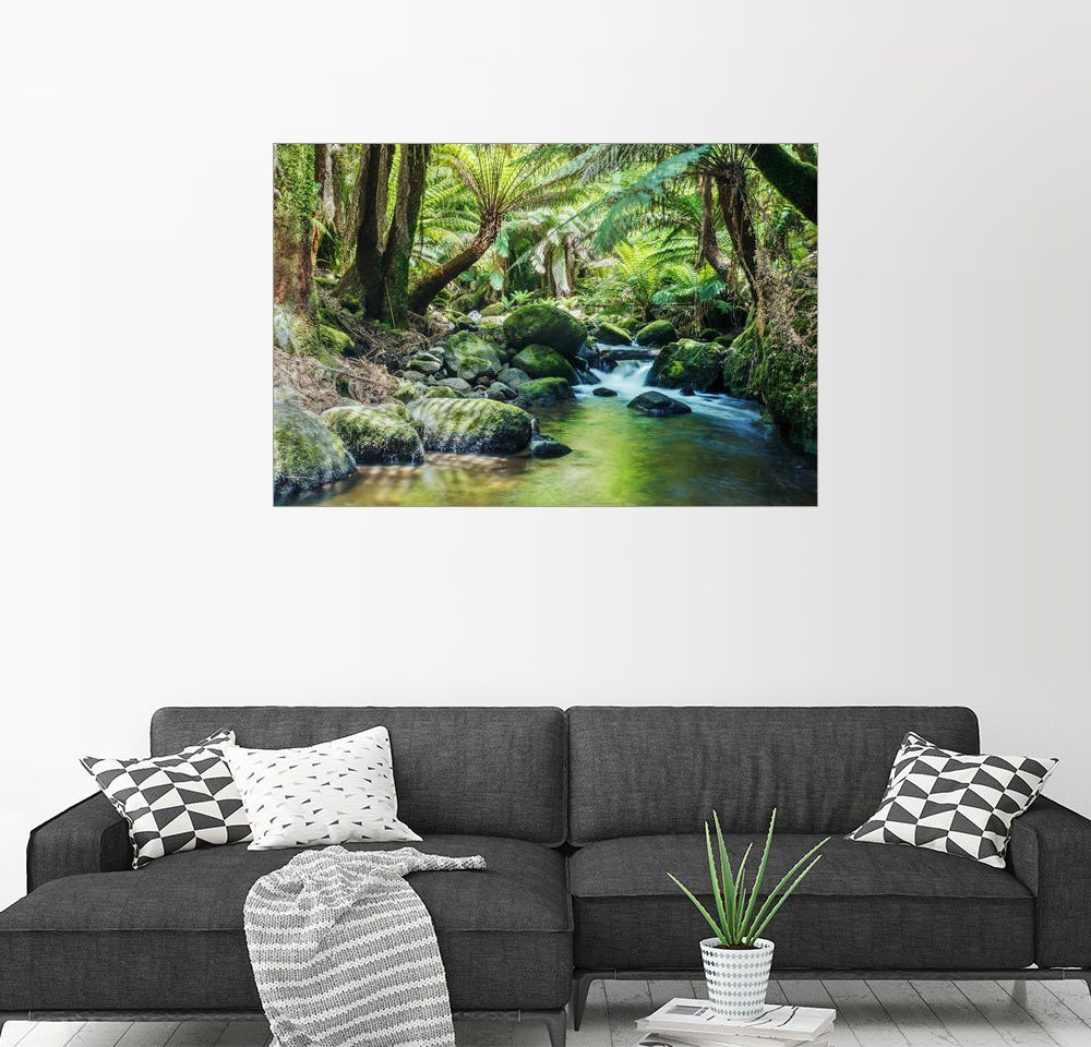 Posterlounge Wandbild – Matteo Colombo Regenwald in Tasmanien bunt,mehrfarbig | 04053831004378