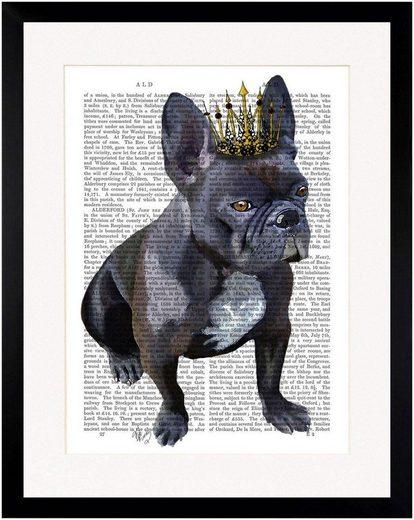 G&C Bild »NEWSPAPER CROWN DOG II«, gerahmt