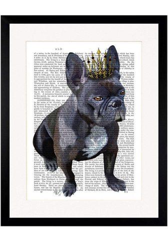 G&C G&C paveikslas »NEWSPAPER CROWN DOG II...