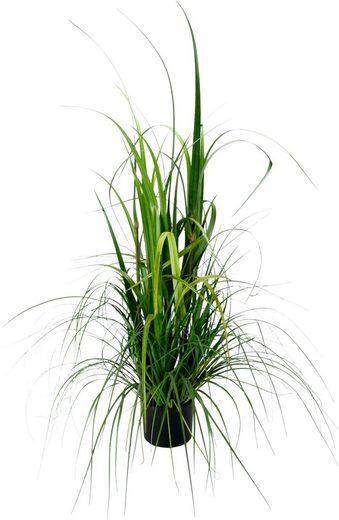 Kunstpflanze »Gras im Topf«