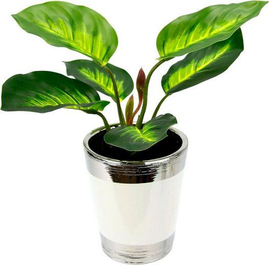 Kunstpflanze »Pothospflanze im Topf« (Set, 2 Stück)