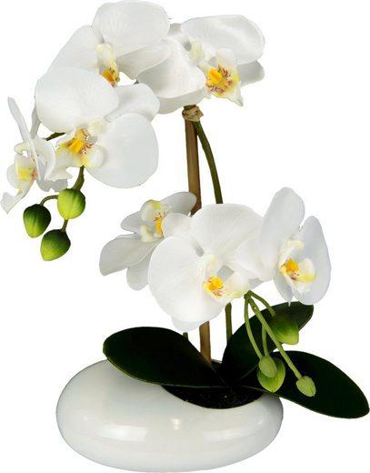 Kunstpflanze »Phalaenopsis in Schale«, Höhe 28 cm